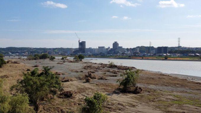 多摩川の河川敷(台風19号から3週間後)