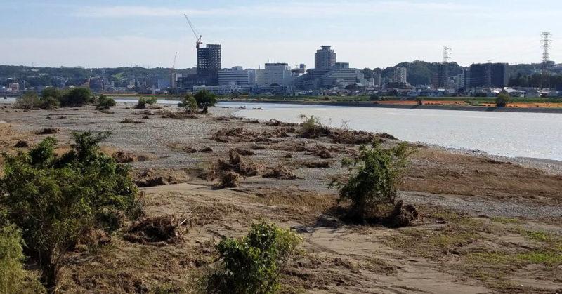 台風19号通過後の多摩川河川敷